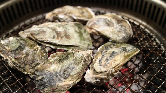 oyster-989180_640